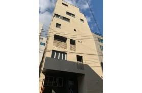 도곡동 도심형생활주택 원룸 건물