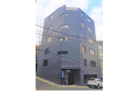 강남구 역세권 신축 올근생 빌딩